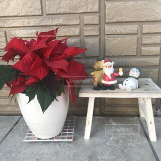 テーブルの上に花瓶の赤い花の写真・画像素材[1619128]
