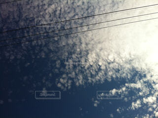 KUMOの写真・画像素材[1619517]