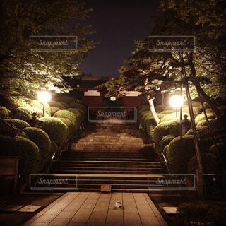 夜中の山門の猫の写真・画像素材[1619873]