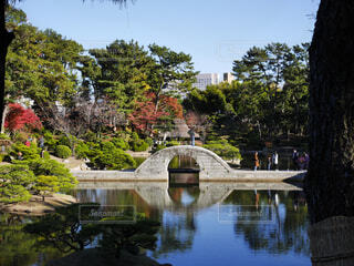 秋の縮景園の写真・画像素材[1637230]
