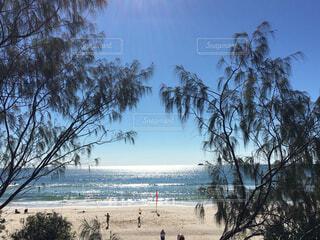 キラキラ輝くビーチの写真・画像素材[1623873]