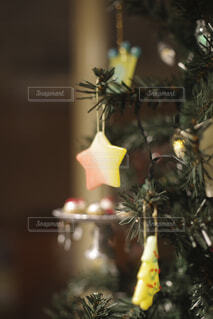 クリスマスツリーの写真・画像素材[1624752]