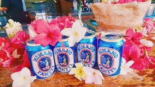 ヒナノビールと南国の花の写真・画像素材[1625797]