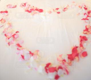 花びらで作ったハートの写真・画像素材[1628109]
