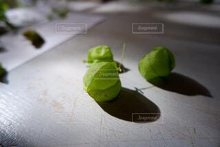 テーブルの上に座って緑と白のプレートの写真・画像素材[1628761]