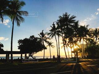 ハワイの夕日の写真・画像素材[1648672]