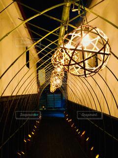 竹に照らされる道の写真・画像素材[1629950]