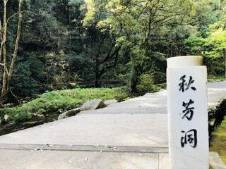 秋芳洞入り口の写真・画像素材[1849566]