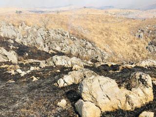 秋吉台山焼き焼け跡の写真・画像素材[1849600]