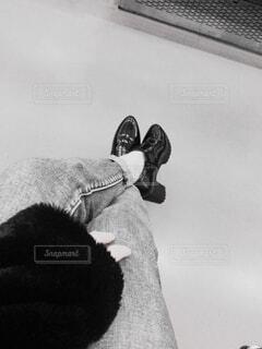 モノクロの世界 × 女の子の写真・画像素材[3289126]