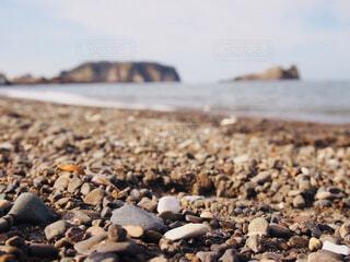 南房総の浜辺の写真・画像素材[1634209]