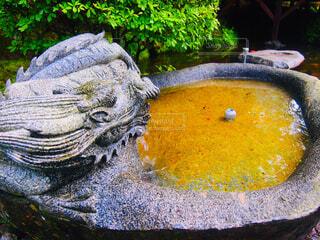 神様の池の写真・画像素材[1648476]