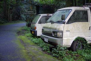 夏の黒山三滝の写真・画像素材[2130296]