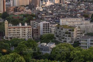 東京の生活の写真・画像素材[2157646]