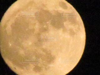 満月の写真・画像素材[1635903]