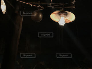 電球の写真・画像素材[389342]