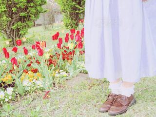 チューリップと足もとの写真・画像素材[2066734]