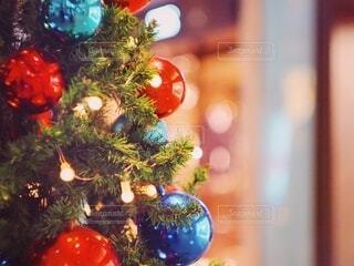 クリスマスツリーの写真・画像素材[2784410]