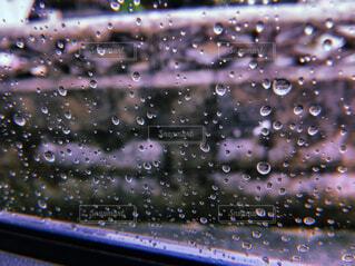 雨の写真・画像素材[1814043]