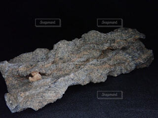 雷管石の写真・画像素材[1696783]