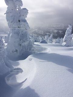 雪に覆われた山の写真・画像素材[1644564]