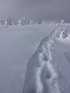 近くに雪の斜面をカバーの写真・画像素材[1644570]