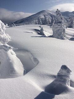 樹氷の写真・画像素材[1644645]