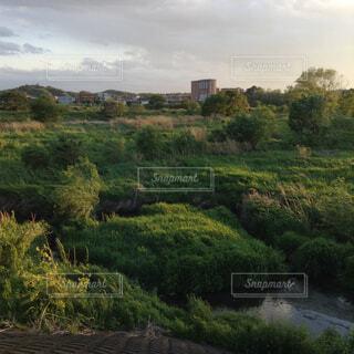 近くに水の体の横にある丘の中腹のアップの写真・画像素材[1644729]
