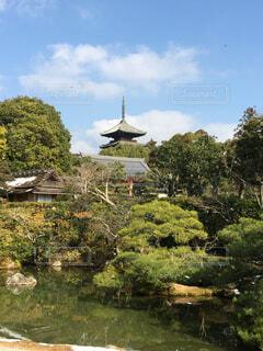 京都の水辺と塔の写真・画像素材[1643139]