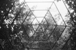 ガーデンの写真・画像素材[1666111]