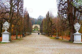 シェーンブルン宮殿の庭の写真・画像素材[1652120]