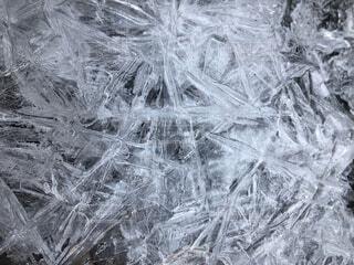 氷の結晶の写真・画像素材[1645821]