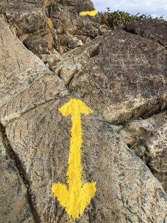 近くの岩のアップの写真・画像素材[1645930]
