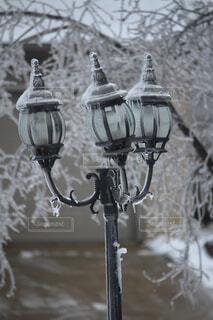 凍った街灯の写真・画像素材[1786278]