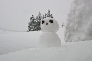 雪だるまの写真・画像素材[1646749]