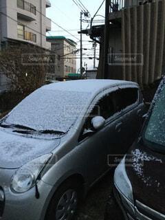 朝起きると雪がうっすらと積もっていたの写真・画像素材[1667779]