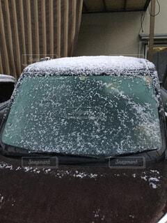 初雪観測の写真・画像素材[1667780]