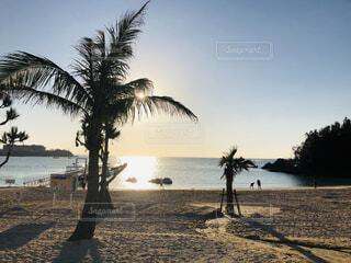 沖縄の写真・画像素材[1649045]