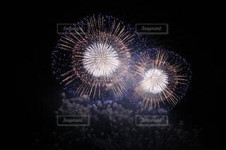 花火の写真・画像素材[1648564]