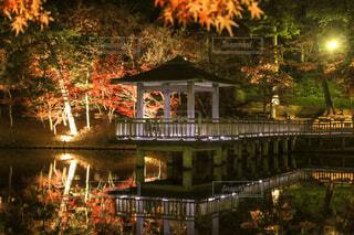 東公園の川に架かる橋の写真・画像素材[1654356]