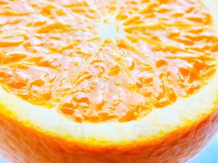 オレンジ、みかん🍊の写真・画像素材[2001426]