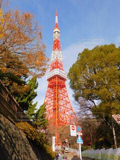 東京タワー🗼の写真・画像素材[2828529]