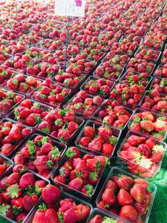 マーケットで並んだ赤い苺の写真・画像素材[1656171]