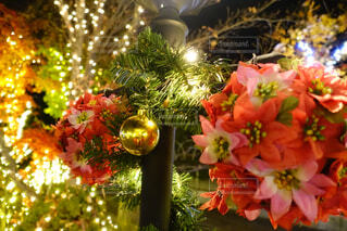 クリスマスイルミネーションの写真・画像素材[1658133]