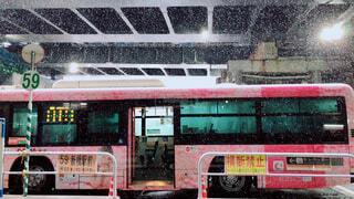 桜柄のバスと降雪 - No.981623