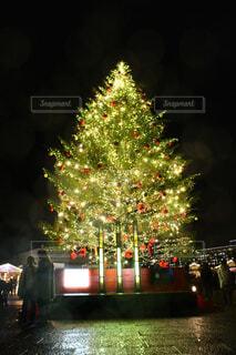 クリスマスツリーの写真・画像素材[2761028]