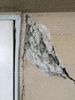 熊本地震の被害を受けた実家のマンションの写真・画像素材[1655542]
