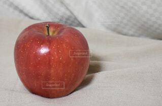 赤いリンゴの写真・画像素材[1658065]