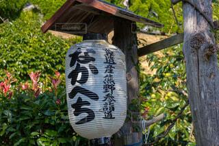 熊野古道の写真・画像素材[1700905]