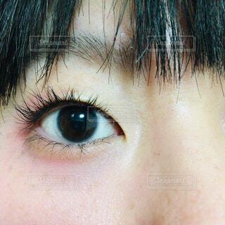 目の写真・画像素材[1701956]